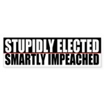 Stupidly Bumper Sticker (10 pk)