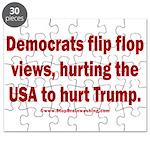 Flip to Hurt Trump Puzzle