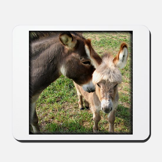 Donkey Mother's Love Mousepad