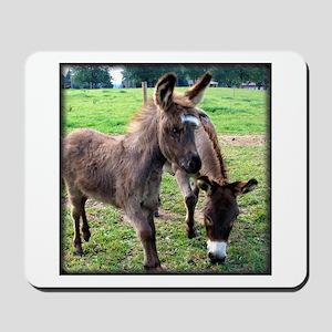 Baby Mini Donkey & Mom Mousepad