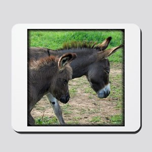 Miniature Donkeys Mousepad