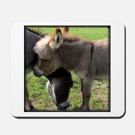 Baby Mini Donkey Hug Mousepad