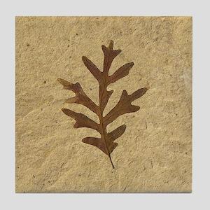 Feather Lobe Oak Leaf Fossil Art Tile Coaster