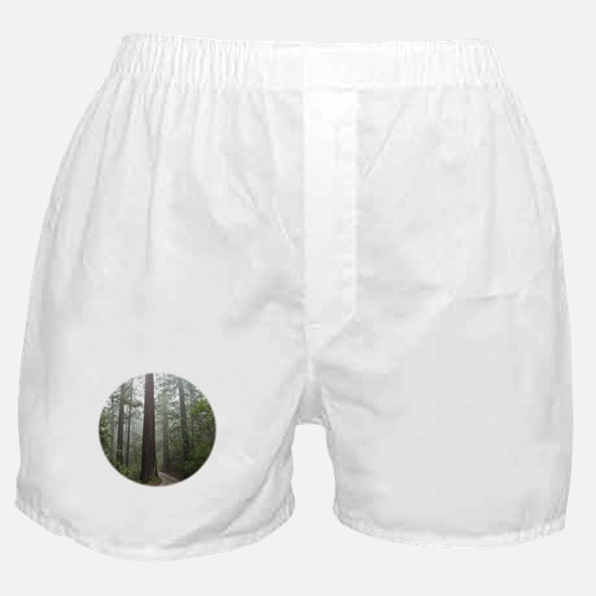 Redwood Forest Boxer Shorts