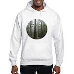 Redwood Forest Hooded Sweatshirt