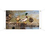 Mallard Ducks Banner