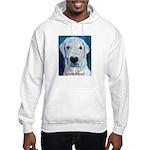 Blue Molly Hooded Sweatshirt
