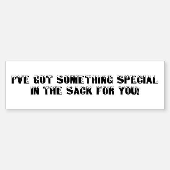 SOMETHING SPECIAL IN THE SACK Bumper Bumper Bumper Sticker