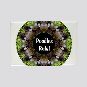 Poodles Rule! Rectangle Magnet