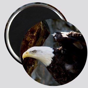 Bald Eagle Pose Magnet