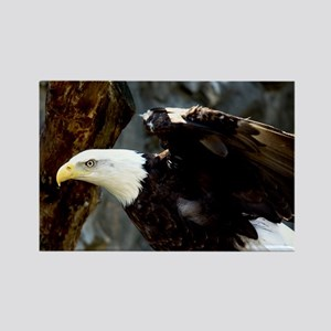 Bald Eagle Pose Rectangle Magnet