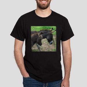 Miniature Donkeys Black T-Shirt