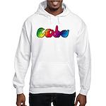 Rainbow CODA Hooded Sweatshirt