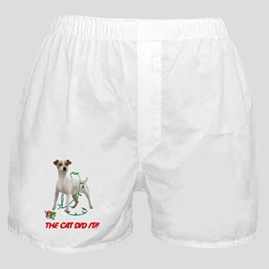 THE CAT DID IT!! Boxer Shorts
