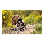 Wild Turkey Gobbler Sticker (Rectangle)