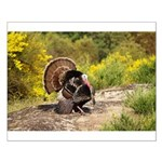 Wild Turkey Gobbler Small Poster