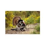 Wild Turkey Gobbler Rectangle Magnet