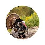 Wild Turkey Gobbler 3.5