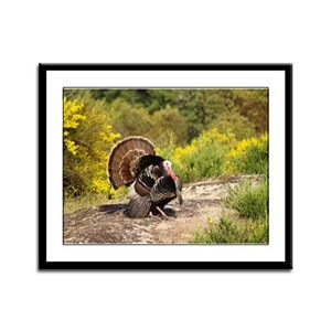 Wild Turkey Gobbler Framed Panel Print