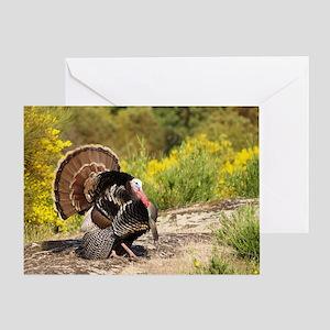 Wild Turkey Gobbler Greeting Card