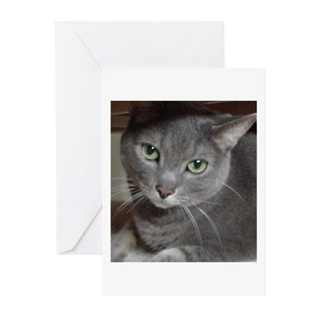 Russian Blue Cat Greeting Cards (Pk of 10)
