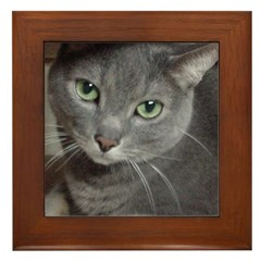 Russian Blue Cat Framed Tile