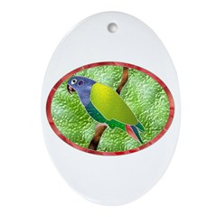 Stained Glass Pionus Parrot Oval Ornament