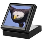 Eagle Eye II Keepsake Box