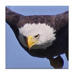 Eagle Eye II Tile Coaster