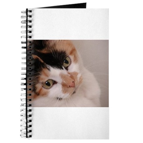 Calico Cat Journal