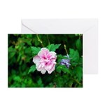 Greeting Cards (Pk of 20) - pink flower