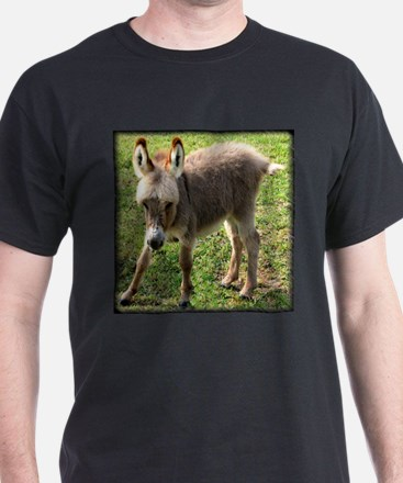 Baby Donkey Wobbly Black T-Shirt