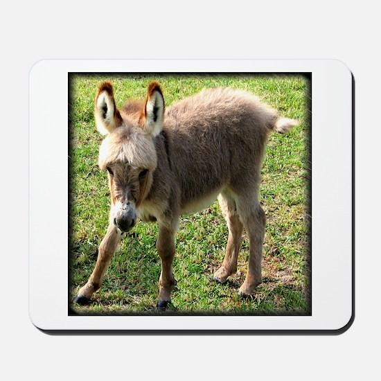 Baby Donkey Wobbly Mousepad