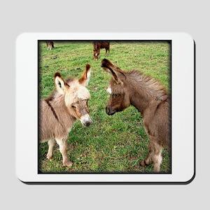 Two Baby Donkeys Mousepad