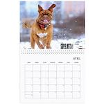 Wall Calendar Super Vets