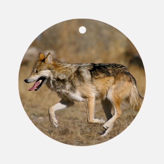Mexican Wolf Ornament (Round)
