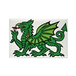 Green Dragon Rectangle Magnet (10 pack)
