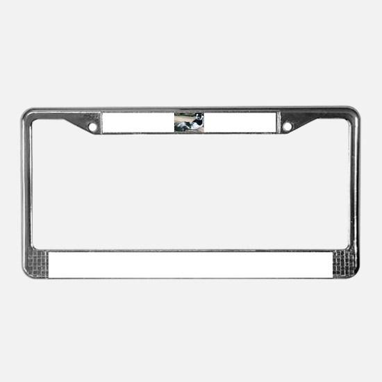 Cute Lemur License Plate Frame