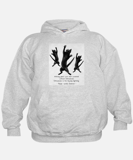 Enthusiastic Cats Hoody