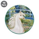 Bridge/Arabian horse (w) 3.5