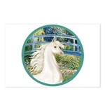 Bridge/Arabian horse (w) Postcards (Package of 8)