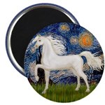 Starry / Arabian Horse (W1) 2.25