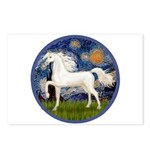 Starry / Arabian Horse (W1) Postcards (Package of