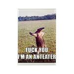 Animal Prints Rectangle Magnet (10 pack)