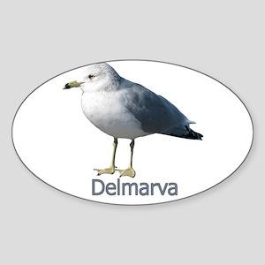 Delmarva Gull Logo Oval Sticker