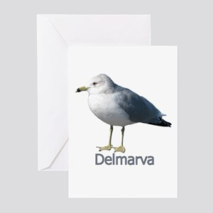 Delmarva Gull Logo Greeting Cards (Pk of 20)