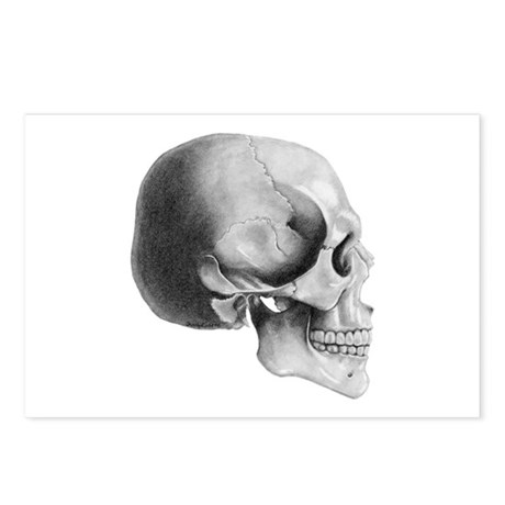Skull Profile - Postcards (Package of 8)