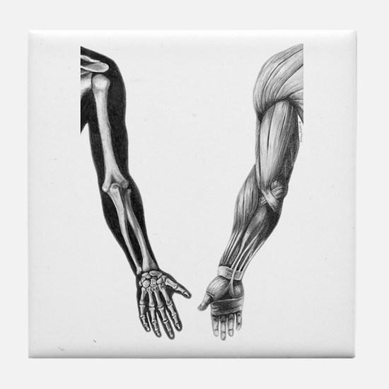 Arms - Tile Coaster