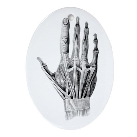 Hand Exposed - Ornament (Oval)