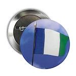 NPA Button